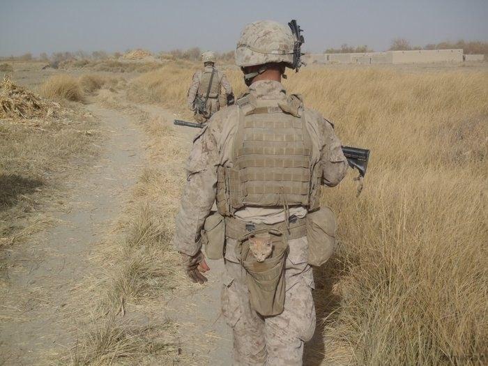 gamaniak_chat-poche-soldat.jpg